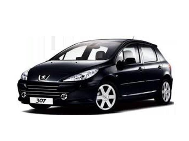 Peugeot 307 (00-08)